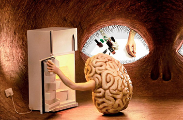 Curiosity and the Advantages of a Hungry Mind